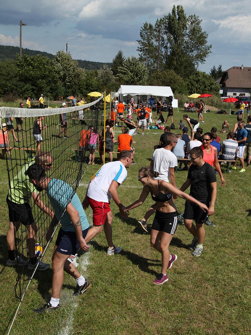Wiesenfest - Volleyballturnier